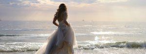 Wedding Blog header