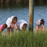Crabbing & Cast Netting | BHI Conservancy
